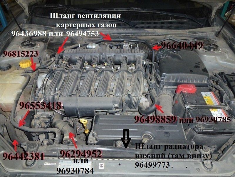 1172c3174fe2.jpg.d3c2cb9954e7f1c33a5bd88bc0f08c65.jpg